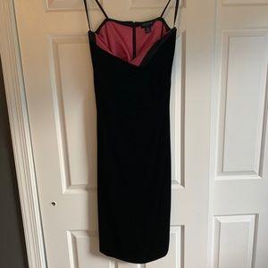 Ann Taylor velvet dress (petite)